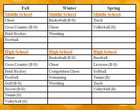 Sports Offered at YSSD