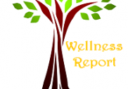 Wellness Report